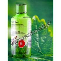 Base e-liquide 06 mg 2D Fresh Baza Menthe Fraiche Inawera
