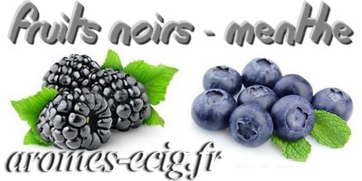 Arome Fruits Noirs Menthe Inawera